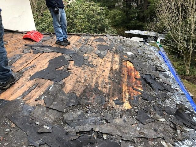 Copper Panel Installation on Shingle Roof in Chestnut Hill, MA - Before Photo