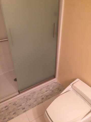 Tub to Shower Remodel in Oak Brook, Illinois