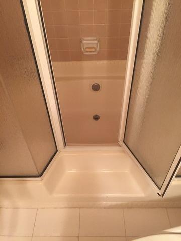 Bathtub to Shower Conversion in Oak Brook, IL. - Before Photo