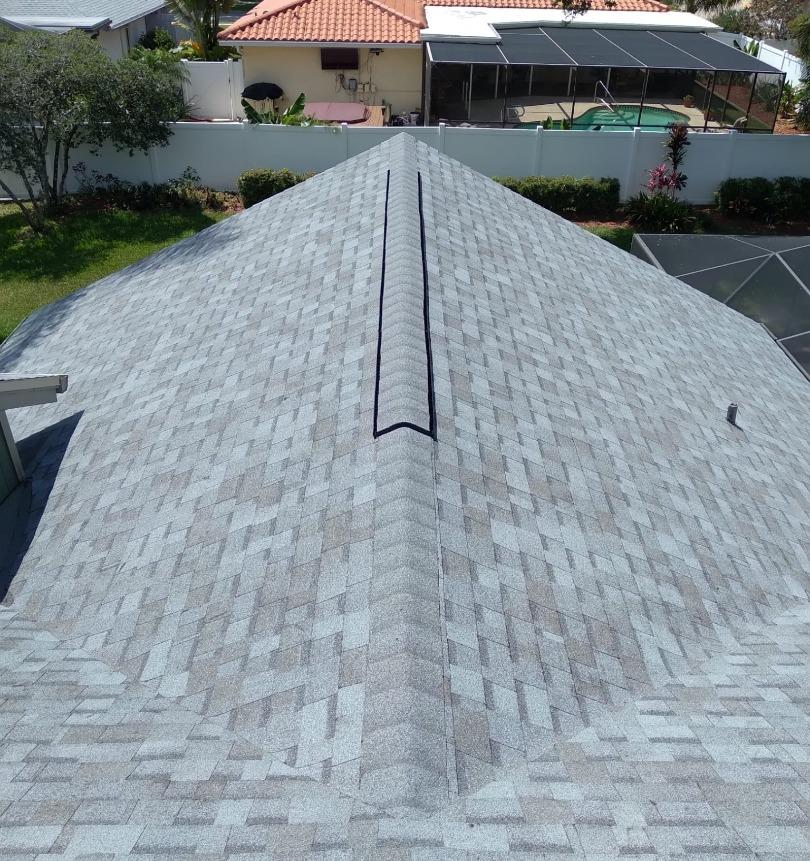 Shingle Roof Replacement in Palm Harbor - After Photo