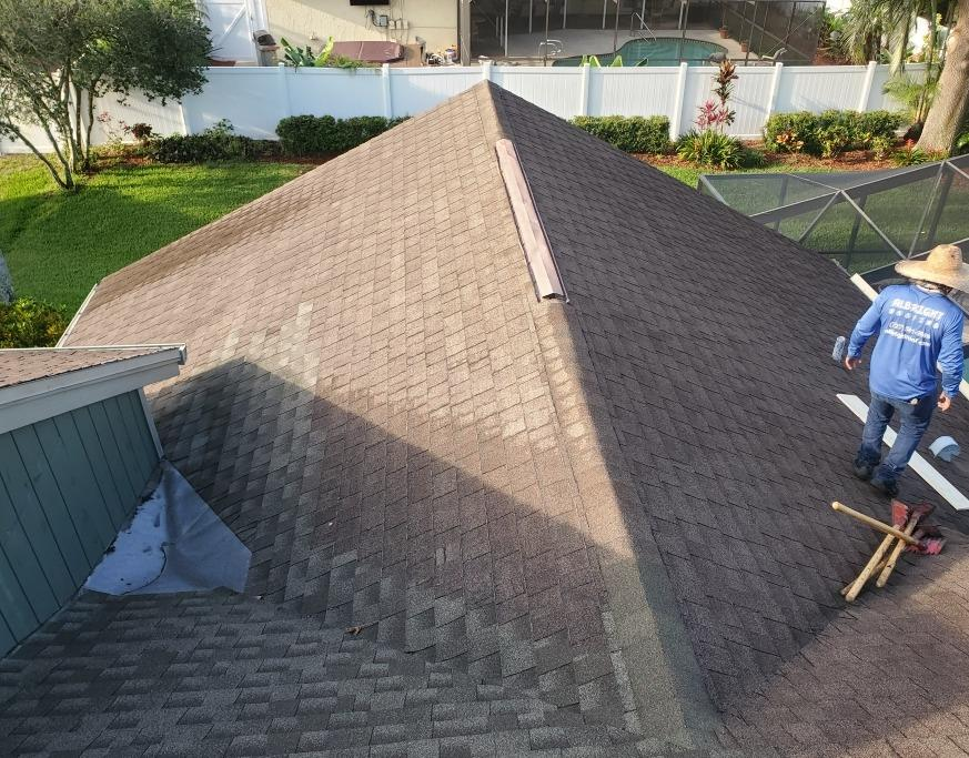 Shingle Roof Replacement in Palm Harbor - Before Photo