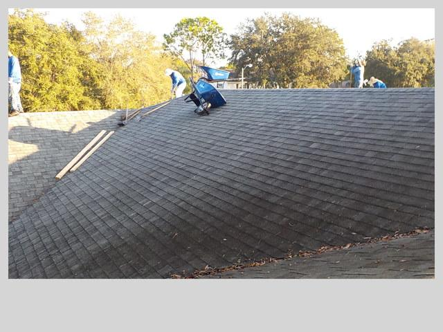 Shingle Roof Replacement in Palm Harbor, FL