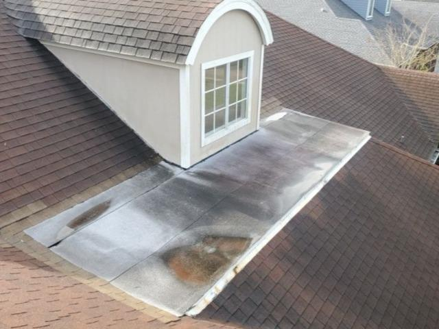 Shingle Roof Replacement Palm Harbor - Before Photo