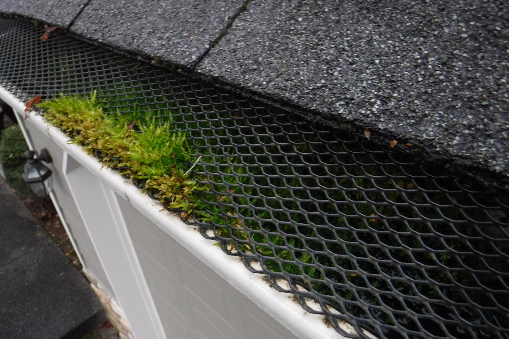 Bad Gutter Protection System Replaced With MasterShield Gutter Guards in the Graham, WA - Before Photo