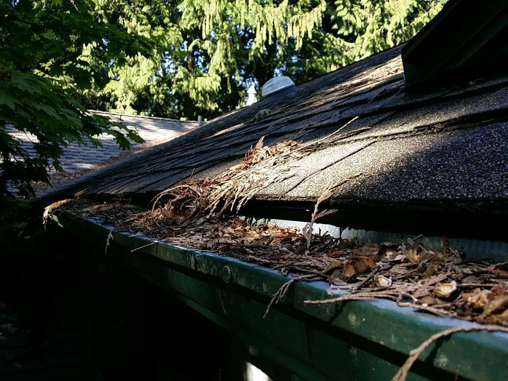 Anacortes, WA area home has full gutters protection installed - Before Photo