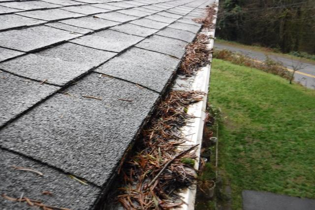 Gutter Guard System Installed on a House in Lake Forest Park, WA