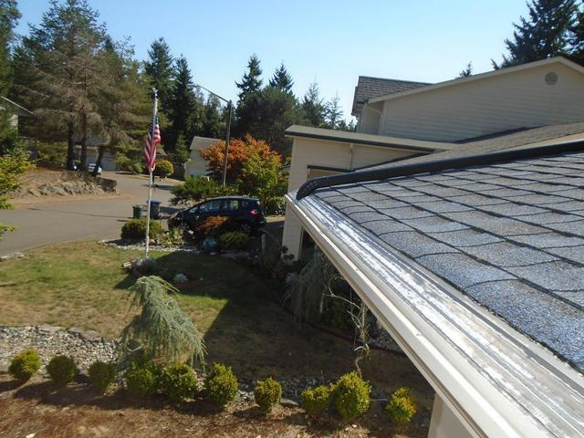 DIY Gutter Guard vs MasterShield in Silverdale, WA