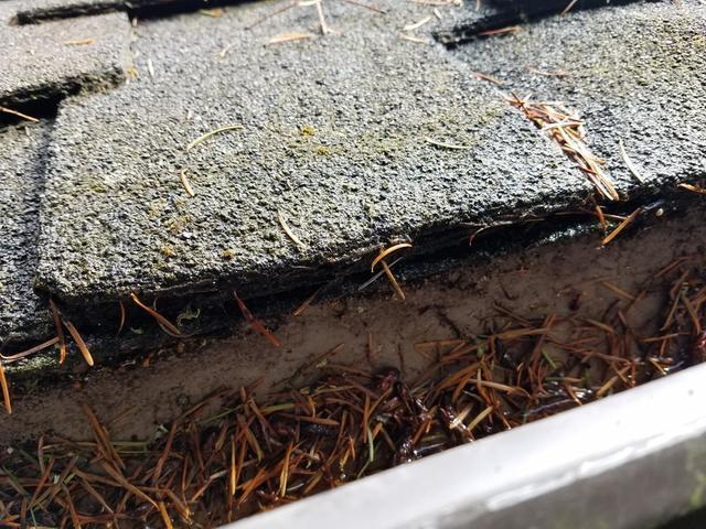 Clogged Gutters Get Protection System Installed  in Port Townsend, WA