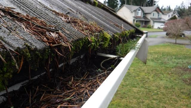 Lacey, WA Home with Tile Roof Has Gutters Replaced