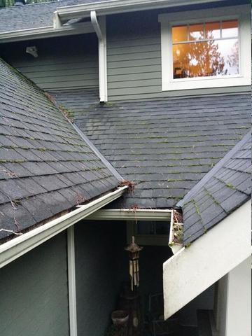 Fascia and Gutters Replaced in Graham, WA - Before Photo