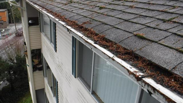 Condo in Mountlake Terrace replaces Leaf Filter with MasterShield  Gutter Guards