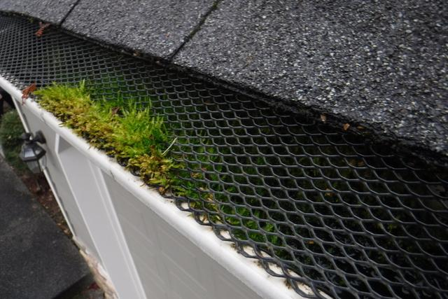 Bad Gutter Protection System Replaced With MasterShield Gutter Guards in the Graham, WA