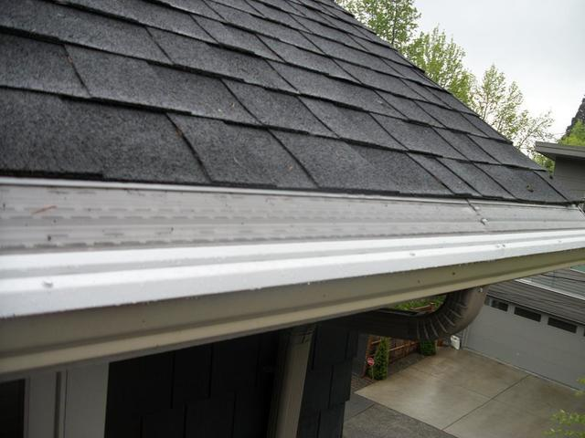 Leaf Solutions vs MasterShield...the difference is clear at this Kenmore, WA area home - After Photo