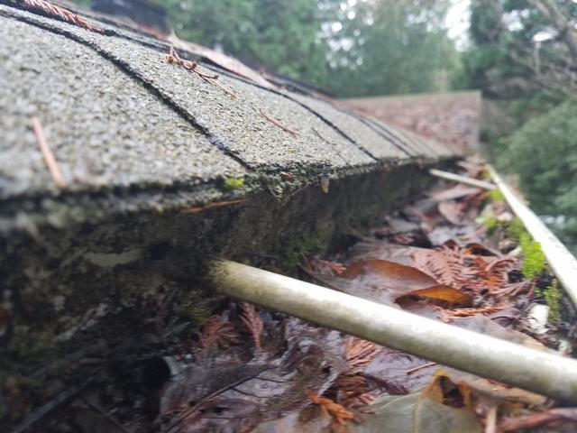 Rochester, WA Clogged Gutters have Guards Installed - Before Photo