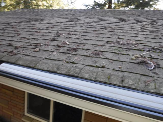 Rochester, WA Clogged Gutters have Guards Installed - After Photo