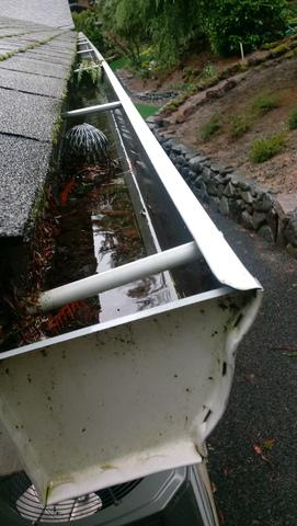 Clogged Gutters in Portland, OR - Before Photo