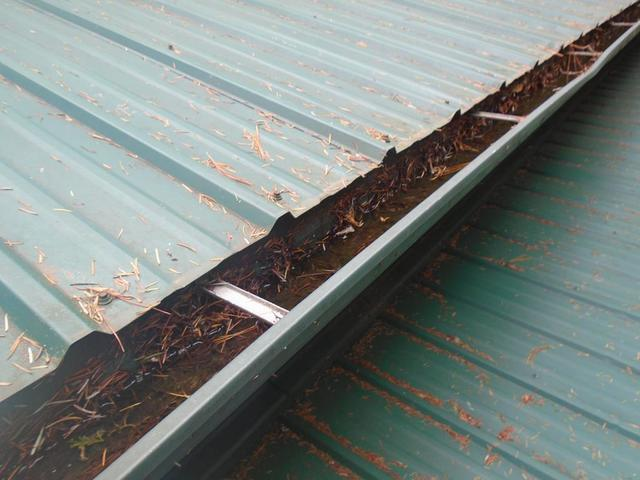 Metal Roof and open gutters inundated with evergreen needles in Oregon City, OR