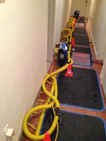 Water Mitigation in Plum Borough, PA - Before Photo