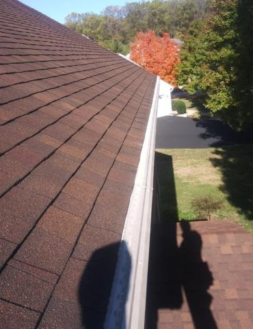 Leaves are clogging new gutters and need the best gutter guard in Catonsville, MD