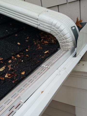 Springfield, Virginia home battling oak tassels