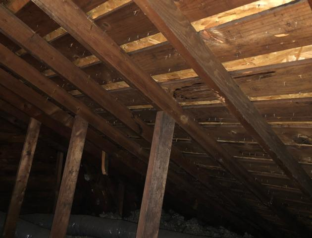 Attic Install located in Omaha,Ne