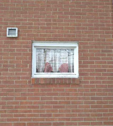 Wave Glass  Block Windows Installation with a Vent in  Rochester, PA