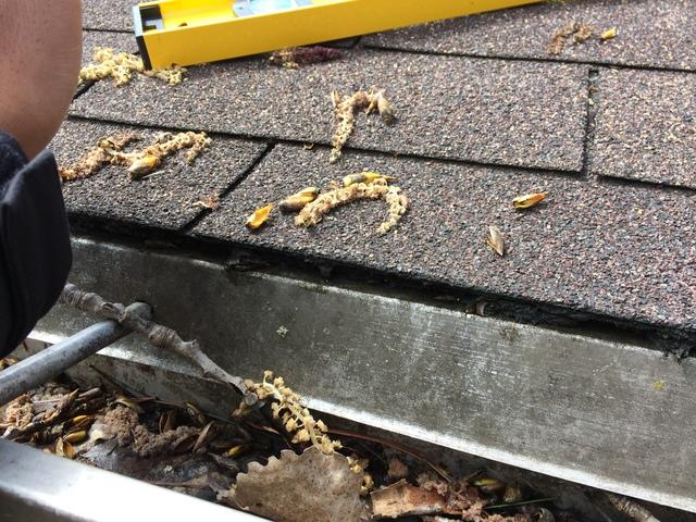 LeafGuard Gutters Installed in Hobart, Wisconsin