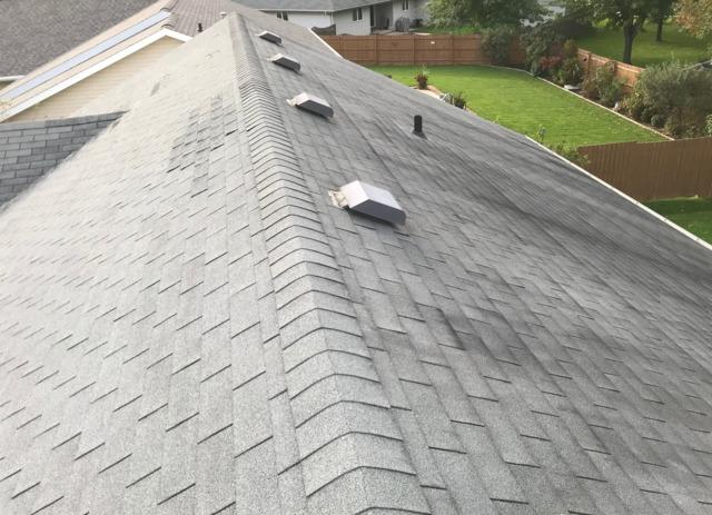 Tyler's Roofing Project