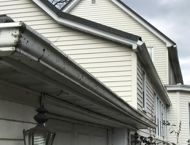 Frank's LeafGuard Gutter Project