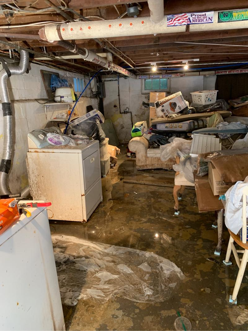 Mold Due to Drain Pipe Break in Union, NJ - Before Photo