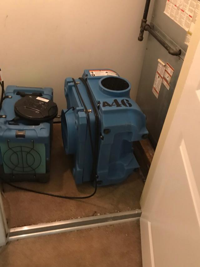 Mold Issue in Butler, NJ - After Photo