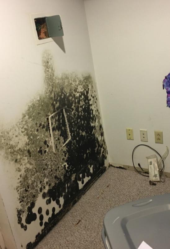 Basement Wall Pipe Leak in Morris Plains, NJ - Before Photo