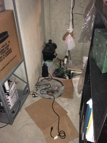 TripleSafe Sump Pump Installation in Westfield