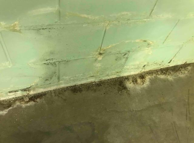 Basement Mold Remediation in Columbus, IN