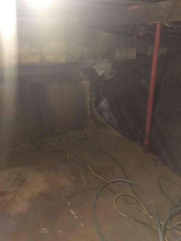 Damp Basement in Losantville, IN