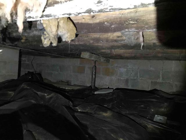 Crawl Space Repair in Danville, IN