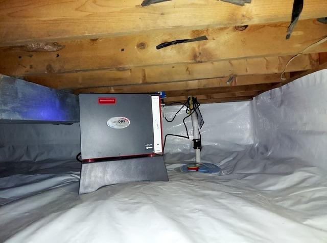 Crawl Space Dehumidifier in Greenfield, IN