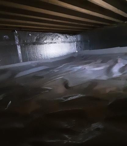 Crawl Space Encapsulation in Alexandria, IN