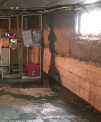 Humidity and Mold Control in Greencastle, IN