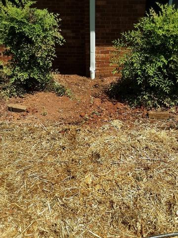 Buried Downspout Installation in King, NC