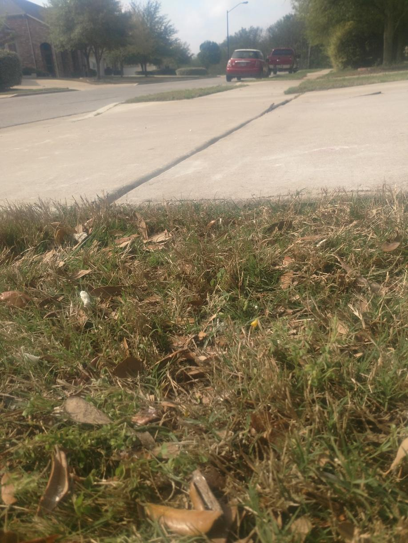 Sunken Driveway Slab. Pflugerville, TX - After Photo