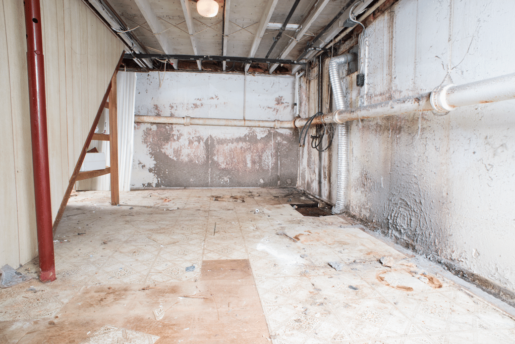 Clear Brook, VA Basement Waterproofing and Mold Remediation - Before Photo