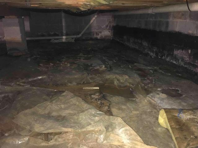 Bristol, VA Crawlspace Encapsulation - Before Photo