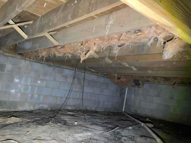Crawl space Encapsulation in Rockville, MD - Before Photo