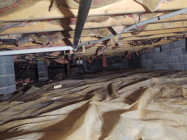 Crawl Space Encapsulation - Monterey, VA