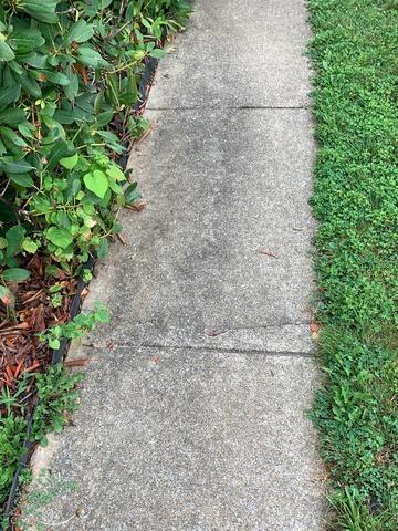 Poly Level & Concrete Repair - Luray, VA