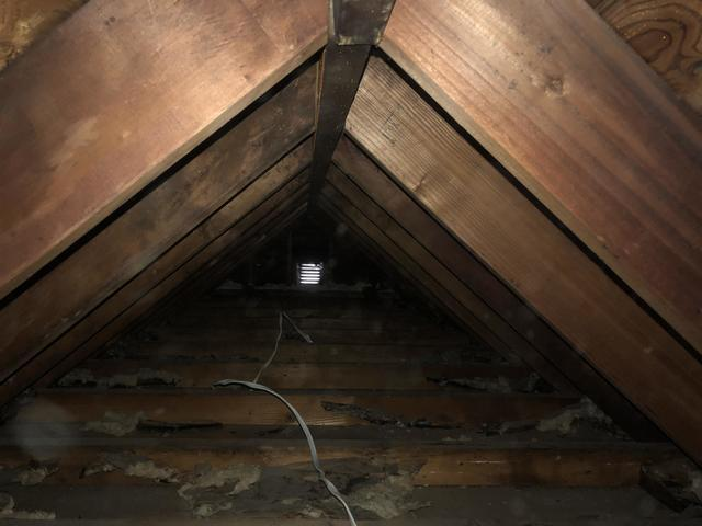 Blown in Cellulose Insulation- Lindenhurst, NY