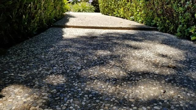 Lifted and Leveled Sinking Sidewalk in Granite Bay