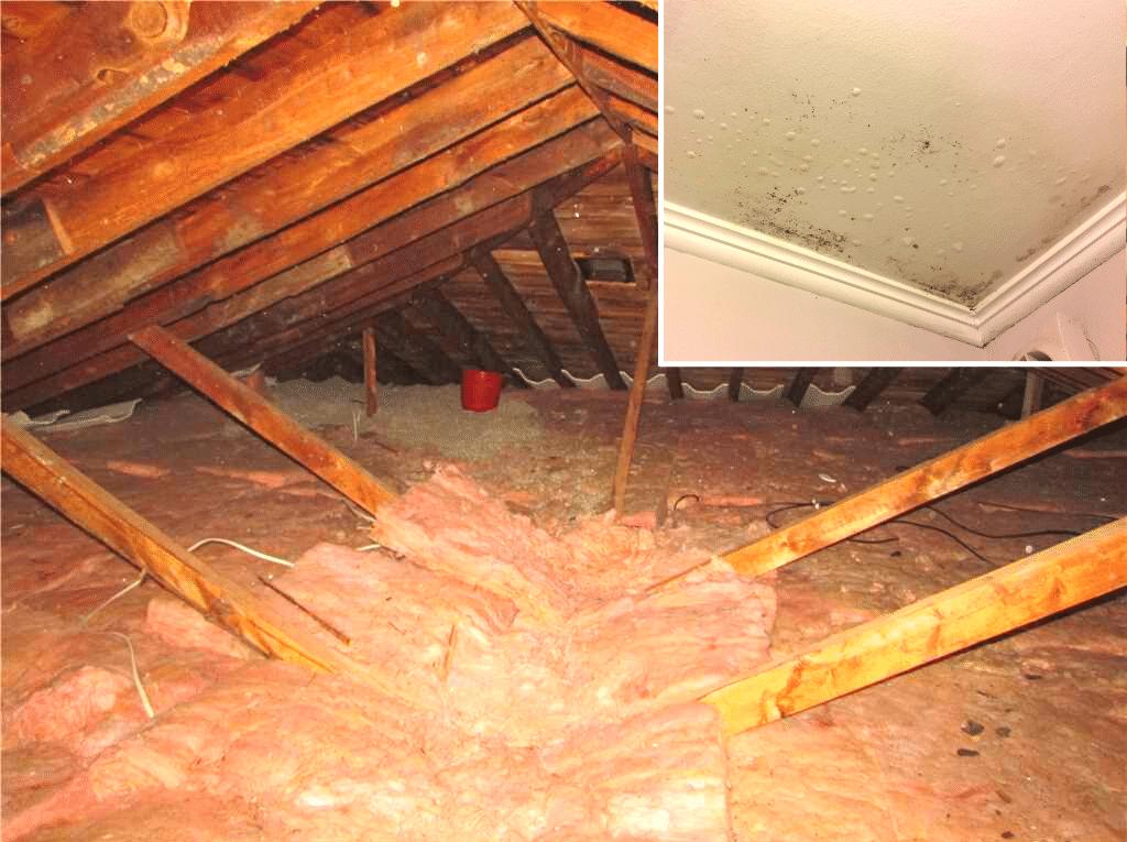 Condensation dans le grenier d'une maison à Dorval, Qc - Before Photo