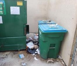 Dumpster Area Cleanup in Sarasota, FL - Before Photo